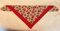 Red and Beige Hearts and Stars 1 front Pet Scaruff